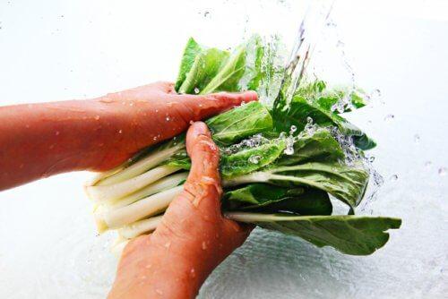 水菜を10分に浸す