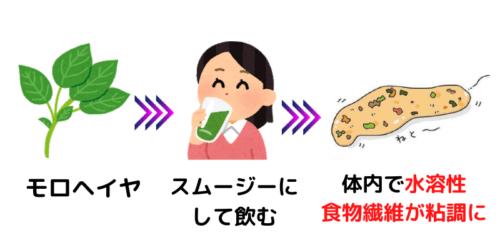 モロヘイヤスムージーに含まれる食物繊維の種類と効果