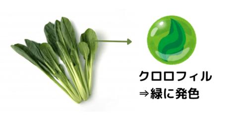 バナナとりんごとプラムを使った冷凍小松菜スムージー