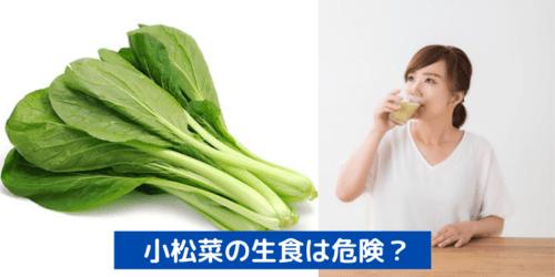 小松菜の生食は危険?安全な理由と生食におすすめのレシピを徹底解説